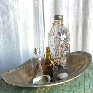 Lavender Tiger Shell Gift Set